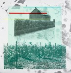 Old Third Vineyard screenprint on aluminum