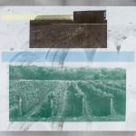 Rosehall Run Vineyard screenprint on aluminum